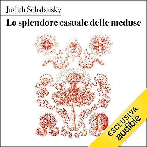 Lo splendore casuale delle meduse cover art