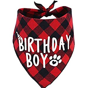 JPB Birthday Boy Dog Bandana