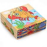APig 9 Piezas de Puzzles Tridimensionales de 6 lados , Puzzles de Maderas para Niños (Animales marinos)