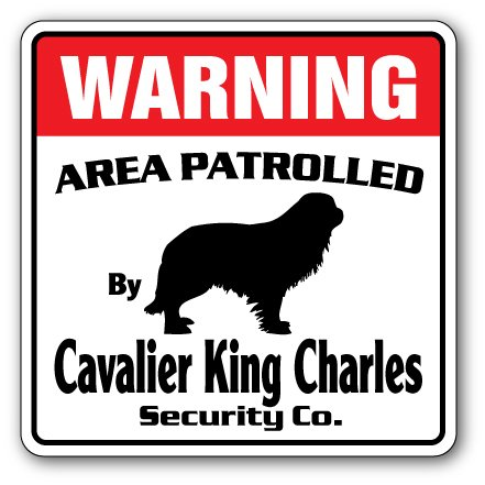 """CAVALIER KING CHARLES Security Sign Area Patrolled guard dog purebred pet lover, 10"""" X 10"""" Plastic Sign"""