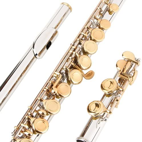 Glory Closed Hole C Flute With Case, Tuning Rod and Cloth,Joint Grease and Gloves Nickel/Laquer-More Colors available...