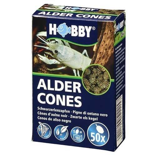 Alder Cônes