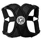Gooby - Comfort X Step-in Harness, Small Dog Harness with Patented Choke Free X Frame, Black, Small
