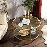 Bonnlo 31.5' Round Coffee Table with Open Storage Shelf,2-Tier Temperred Glass Round Accent Coffee Table with Metal Frame