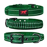 Heavy Duty Dog Collar With Handle | Ballistic Nylon Heavy Duty Collar | Padded Reflective Dog Collar With Adjustable Stainless Steel Hardware | Sizing for All Breeds (Medium/Large, Forest Green)