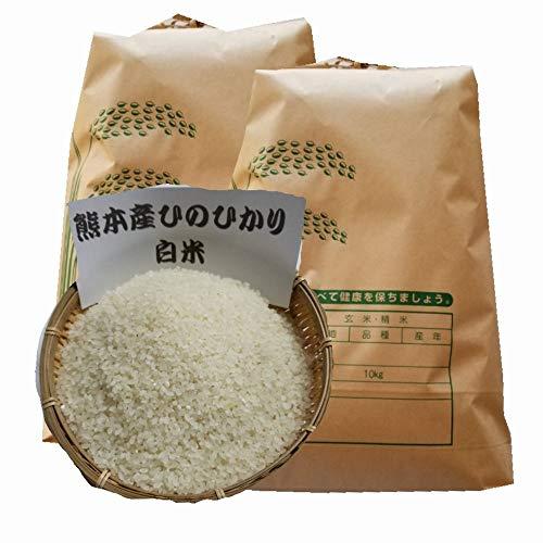 氷川清流米 白米 10kg x2袋(計 20kg 業務用 ) / 令和2年 熊本県産 ひのひかり 10割使用