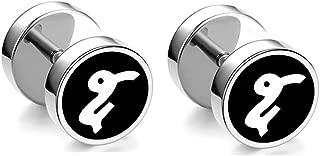 Hip Hop Stainless Steel Twelve Constellations Pattern Stud Earrings