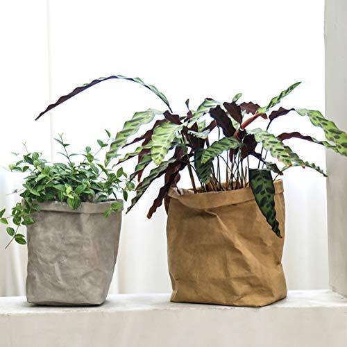 Weiyiroty Bolsa de Almacenamiento Lavable Lavable, Bolsa reciclable, Bolsa de Papel marrón reciclable, Bolsa Decorativa para macetas, para Armario de Cocina, Suministros de(Medium)