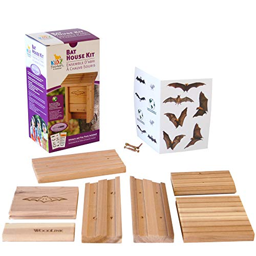 Club Pack of 6 Woodlink Bat House DIY Craft Kits