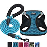 matilor 2 Packs Dog Harness Step-in Breathable Puppy Cat Dog Vest Harnesses for Small Medium Dogs (Harness+Leash, XS Chest 11''-12'', Blue+Blue, 2 Packs)