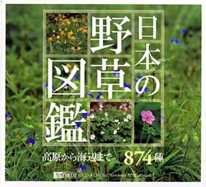 風が強い日十二日本の野草図鑑 高原から海辺まで874種