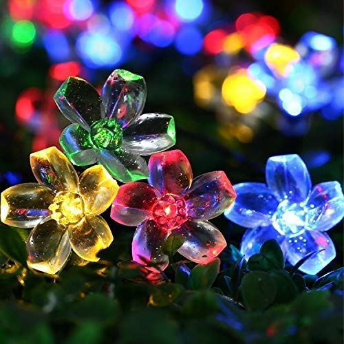 Solar Fairy String Lights|Mr.Twinklelight 50 LED 6.5M Waterproof Fairy Lights Decorative Outdoor Flower String Lights for Celebrate Wedding/Birthday/Christmas Party(Colorful)