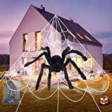 "COCEQUC Halloween Spider Decorations 200"" Triangular Spider Web + 30"" Giant Fake Spiders + Stretch Cobweb with 2 Small Spiders for Scary Halloween Decorations Yard Lawn Home Party Haunted House Decor"