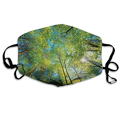 smile-life Immergrüner Rücken Naturgebiet Mutter Erde Kalkstamm Mangrovenflora Weidenfotografie, winddichte Gesichtsdekorationen
