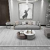 Kunsen tapetes para Sala Diseño de patrón de Rayas Gris Gris Profundo Gris Fácil de Limpiar, Alfombra Grande 120X160cm