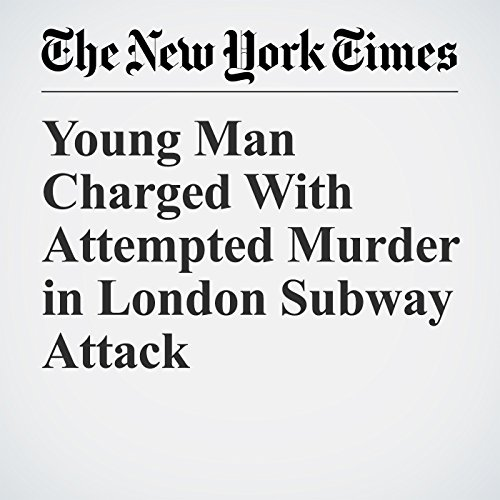 Young Man Charged With Attempted Murder in London Subway Attack audiobook cover art
