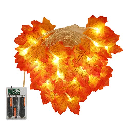 SunshineFace 4 piezas de hojas de arce cadena de luces funciona con pilas Acción de Gracias Caída de la Guirnalda, luz