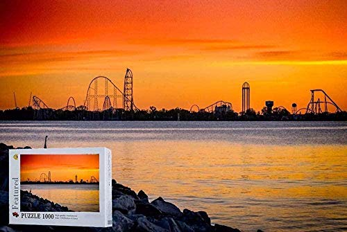 Houten puzzel 1000 stukjes,originele Foto Kunstwerk Puzzels-Achtbaan Op Cedar Point Ohio Puzzels