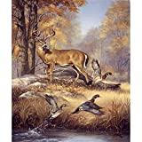 Paint By Numbers For Adults With Framed Canvas - Diy Full Set Of Assorted Color Oil Painting Kit And Brush Accessories -Deer And Wild Duck,16X20