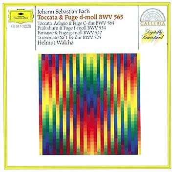 Bach, J.S.: Toccata & Fugue BWV 565; Organ Works BWV 534, 542, 564 & 525