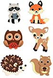 Natural Wood Painted Woodland Creatures Cutouts- 6 Count - Hedgehog, Squirrel, Owl, Deer, Fox and Raccoon