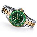 Stauer Men's Stainless Steel Evergreen Diver Wrist Watch for Men