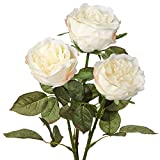 3Pcs White Peony Real Feel Flower Fake Peony Long Stem Flower Use in Floral Arrangements, Bouquets, Crafts, Wedding, Home Decor-Peony Bouquet White Flower