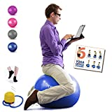 Homecircles No Roll Yoga Ball Chairs for The Office - 65cm Premier Anti-Burst Yogaball with Grip Socks & PDF Exercise Ball Guide, Gym Quality Balance & Stability Ball Chair for Office - Blue