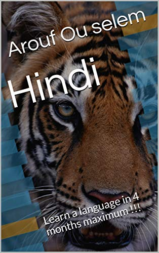 Hindi: Learn a language in 4 months maximum !!! (English Edition)