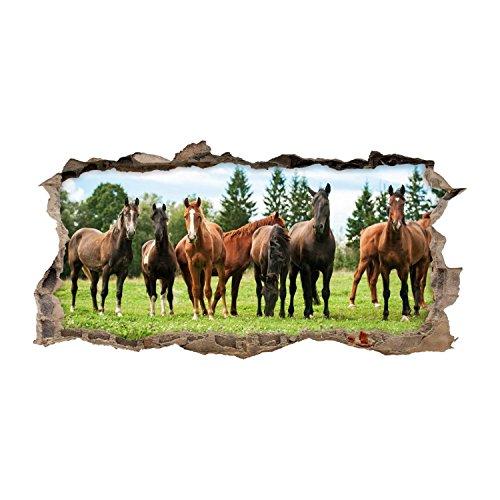 nikima - 125 Wandtattoo Pferde Braun Koppel Wiese - Loch in der Wand - in 6 Größen - Wunderschöne Kinderzimmer Sticker Aufkleber Bezaubernde Wanddeko Wandbild Mädchen - Größe 750 x 380 mm