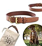 Jack & Russell Collar de Perro de Cuero de Primera Calidad Peter - Cuero Original con el Sello de J&R - Collar de Cuero de búfalo marrón Peter (S - Circunferencia del Cuello 26.0-33.5 cm)