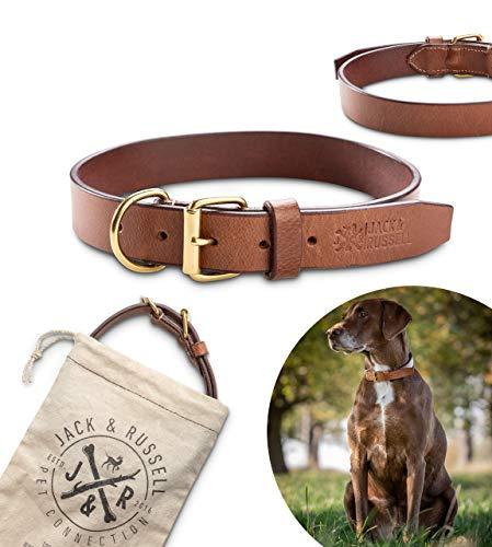 Jack & Russell Collar de Perro de Cuero de Primera Calidad Peter - Cuero Original con el Sello de J&R - Collar de Cuero de búfalo marrón Peter (M - Circunferencia del Cuello 32.5-41.0 cm)
