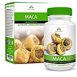 Extracto de Maca - Máxima Concentración de Extracto de Raíz de Maca - Para Hombres y Mujeres - Rico en Zinc & Magnesio - 90 Cápsulas...