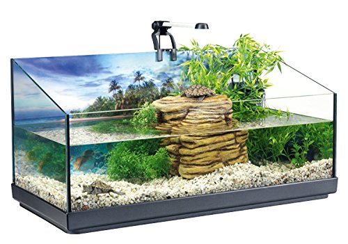 Tetra Repto Aquaset - acquario per tartarughe