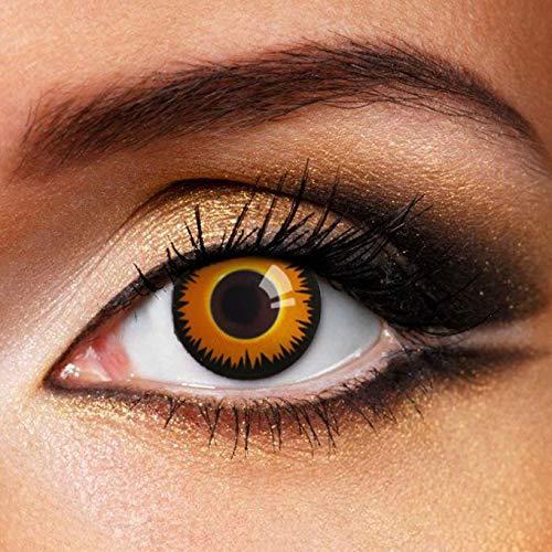 Partylens Farblinsen - Orange Wolf - weiche Kontaktlinsen - Jahreslinsen mit Kontaktlinsenbehälter Jahreslinsen, Mehrfarbig, BC 8.6 mm/DIA 14.5 mm / 0 Dioptrien