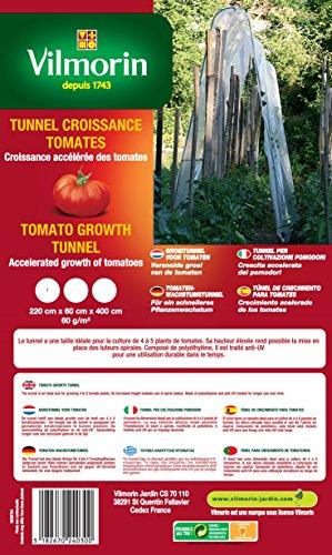 Vilmorin VA 04130 Crescita Serre Tunnel per Pomodoro 60 g/m² 220 x 60 x 400 cm