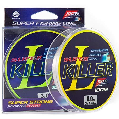 KDHJY 2pcs 100M Grado Superior Fluorocarbono Revestimiento Pesca Línea 3-40LB Japonesa monofilamento hundimiento Línea Pesca de la Carpa Leader Line