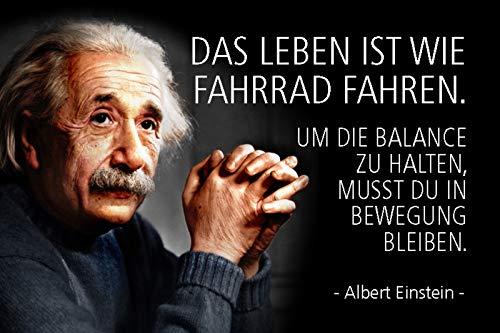 Schatzmix Spruch Einstein Das Leben ist wie Fahrrad Metallschild Wanddeko 20x30 cm tin Sign Blechschild, Blech, Mehrfarbig
