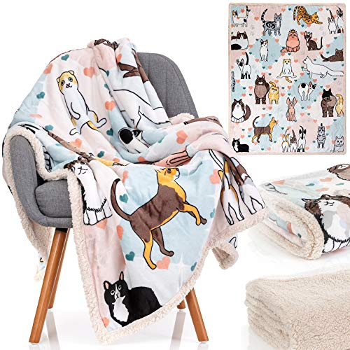 Cat Blanket - 28 Cute Cat Companions on a Sumptuously Soft 50x60 Inch Cat Lover Throw Blanket - The Most Beloved Cat Gifts for Cat Lovers Everywhere