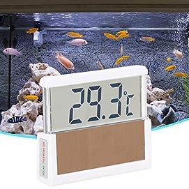 SALUTUYA 10 s/Zeit Aquarienthermometer für Fischtanks