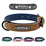 Dog Collars Review and Comparison