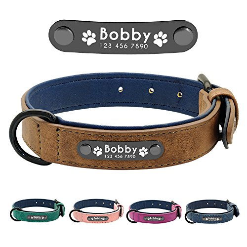 Didog Soft Leather Padded Custom Dog Collar with Personalized Nameplate and D Ring, Engraved Dog Collars for Small Medium Large Dogs,Brown,M