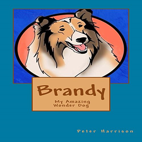 Brandy audiobook cover art