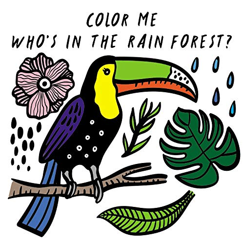 Color Me: Who's in the Rain Forest?: Watch Me Change Colour In Water (Wee Gallery Bath Books)