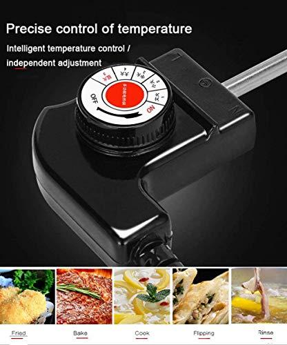 519JWBnpTtL. SL500  - WJJJ Elektrogrill Hot Pot BBQ Fish Plate Multi-Function Two-in-One Elektrogrill Hot Pot Barbecue Shabu-Shabu, 2200 W für Home Party