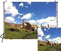 HD自然の山の背景7x5ftアルパカ青空白い雲写真背景写真スタジオブース小道具LYAY872