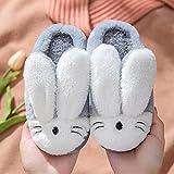 Zapatillas De Casa para Mujer Verano Abiertas,Zapatillas para NiñOs De OtoñO E Invierno, Zapatos De AlgodóN Antideslizantes para El Hogar del Bebé, Zapatillas CáLidas De Felpa De Dibujos Animados Par