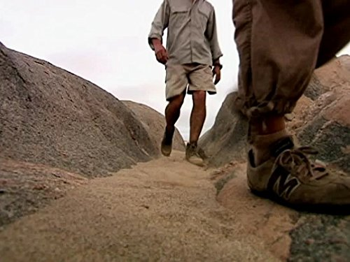 Abenteuer Namib, Im Tal der Wüstenlöwen