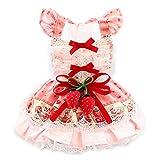 JJZXD Pet Spring Summer Princess Falda Vestido para Cachorros, Perros pequeños y medianos Vestido Fresco...