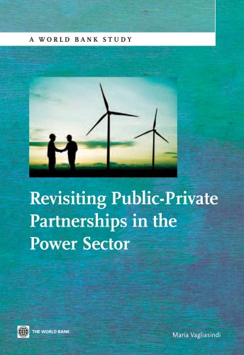 Revisiting Public-Private Partnerships in the Power Sector (World Bank Studies) (English Edition)